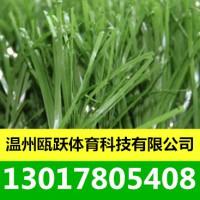 人造草坪 足球场人工草坪 人造草坪厂家 户外游乐草坪