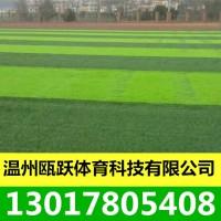 人造草坪 塑料草坪 足球场人工草坪 户外娱乐人工草坪