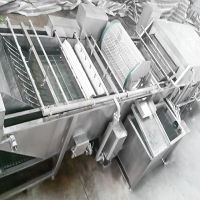 净菜加工设备线 茎类叶菜蔬菜加工 净菜加工设备