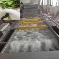 蔬菜清洗机 蔬菜清洗设备 大型果蔬清洗机