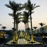 丛一工艺仿真椰子树 8米仿真椰子树 户外装饰观景热带椰子树