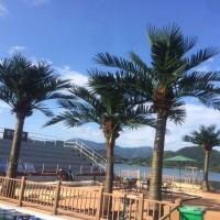 厂家直销仿真椰子树 仿真植物椰子树 仿真装饰热带风景树